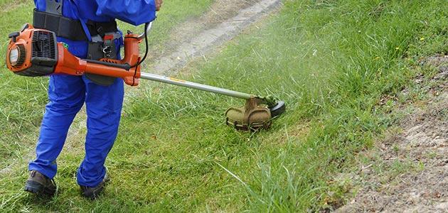 Services 64 bayonne service la personne jardinage for Service a la personne bricolage